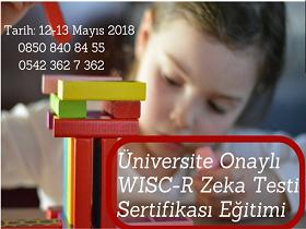 Üniversite Onaylı WISC-R Uygulayıcı Eğitimi