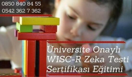WISC-R Zeka Testi Uygulayıcı Eğitimi