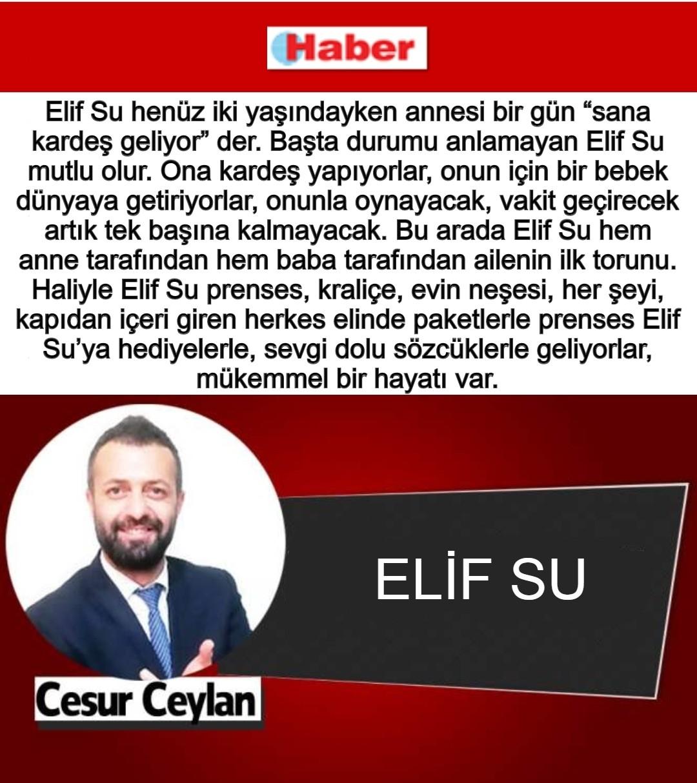 Elif Su